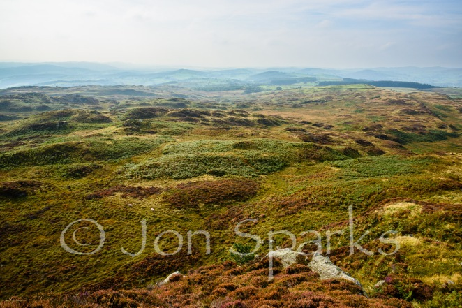 """Mile upon mile of green and purple moorland"". And this is just a bit of it. Bethecar Moor, looking south from Arnsbarrow Hill."