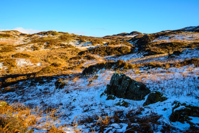 Upper reaches of Tarn Beck – no Swallowdale here